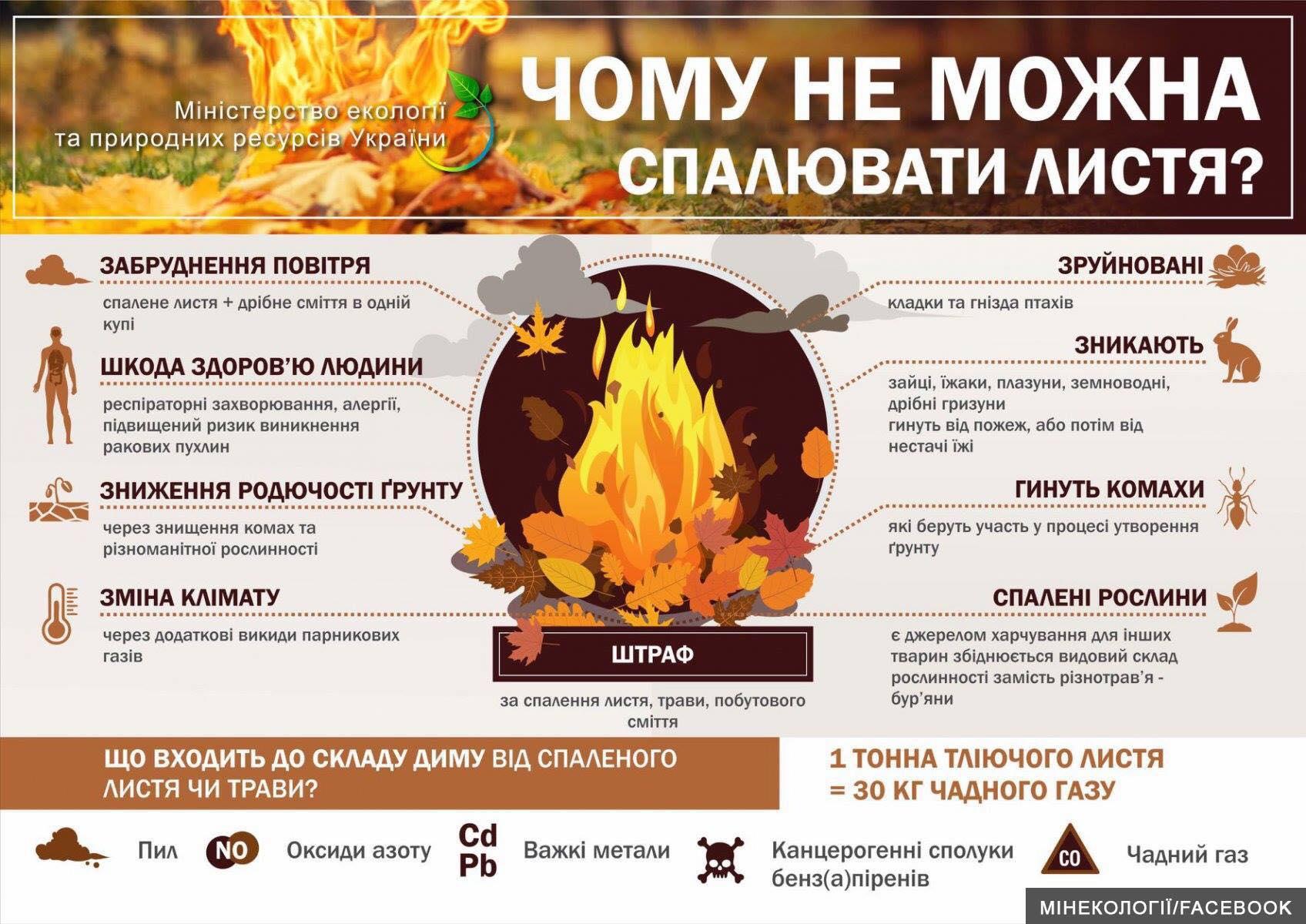 Шкода спалювання листя
